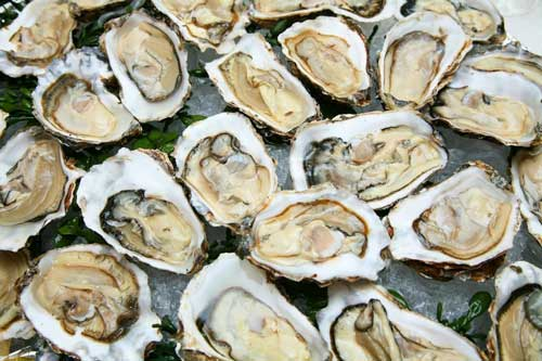 How To Cook Oysters In The Shell